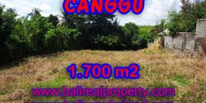 Land in Canggu for sale, Stunning view in Canggu Pererenan Bali – TJCG143