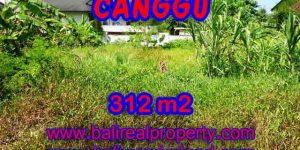 Land for sale in Canggu Bali, Wonderful view in Canggu Pererenan – TJCG145
