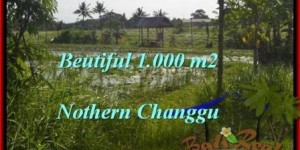 Exotic PROPERTY LAND SALE IN Canggu Batu Bolong  TJCG180
