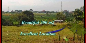 FOR SALE Magnificent 300 m2 LAND IN Canggu Brawa BALI TJCG185
