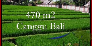 LAND SALE IN CANGGU BALI TJCG187