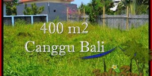 Beautiful Canggu Pererenan LAND FOR SALE TJCG189