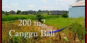 FOR SALE Exotic PROPERTY LAND IN Canggu Pererenan TJCG191