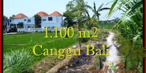 Affordable CANGGU 1,100 m2 LAND FOR SALE TJCG193