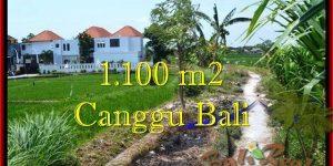 Beautiful PROPERTY LAND IN Canggu Brawa BALI FOR SALE TJCG193