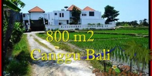 Canggu Brawa BALI 800 m2 LAND FOR SALE TJCG194