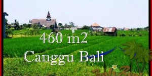 Canggu Brawa LAND FOR SALE TJCG195