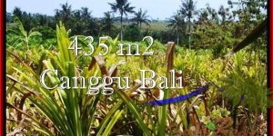 FOR SALE Exotic 435 m2 LAND IN Canggu Pererenan BALI TJCG196