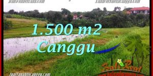 Magnificent PROPERTY 1,500 m2 LAND IN CANGGU BALI FOR SALE TJCG198