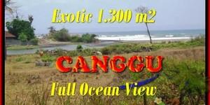Exotic LAND SALE IN CANGGU BALI TJCG162