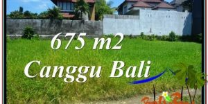 Magnificent CANGGU 675 m2 LAND FOR SALE TJCG200