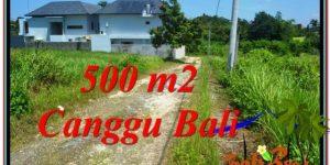 Beautiful PROPERTY Canggu Brawa LAND FOR SALE TJCG201