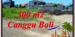 Beautiful PROPERTY LAND SALE IN Canggu Brawa TJCG203