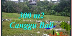Affordable PROPERTY Canggu Umalas BALI 300 m2 LAND FOR SALE TJCG205