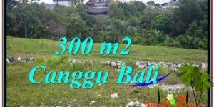 Magnificent CANGGU BALI LAND FOR SALE TJCG205
