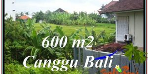 Beautiful CANGGU BALI LAND FOR SALE TJCG206
