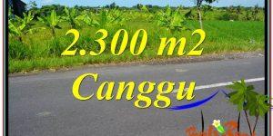 Affordable LAND FOR SALE IN CANGGU BALI TJCG209