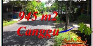 FOR SALE Affordable LAND IN CANGGU TJCG210