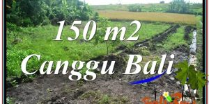 Exotic PROPERTY LAND SALE IN CANGGU BALI TJCG213