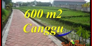 Beautiful 600 m2 LAND IN Canggu Brawa BALI FOR SALE TJCG220