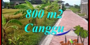 Exotic PROPERTY Canggu Brawa BALI 800 m2 LAND FOR SALE TJCG221