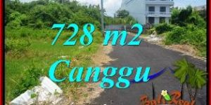 Magnificent PROPERTY 728 m2 LAND IN CANGGU BALI FOR SALE TJCG222