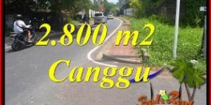 Exotic 2,800 m2 LAND SALE IN CANGGU BALI TJCG223