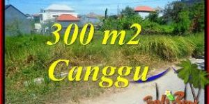 Affordable PROPERTY 300 m2 LAND IN CANGGU BALI FOR SALE TJCG225