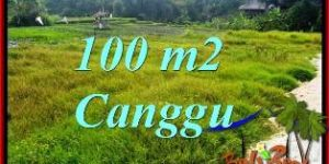 CANGGU 100 m2 LAND FOR SALE TJCG227