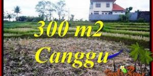 FOR SALE Exotic 300 m2 LAND IN CANGGU TJCG230
