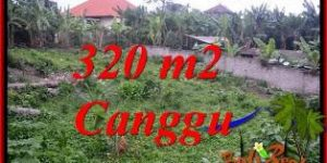 Exotic CANGGU PERERENAN LAND FOR SALE TJCG231